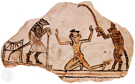 Ostracon Cat Executioner