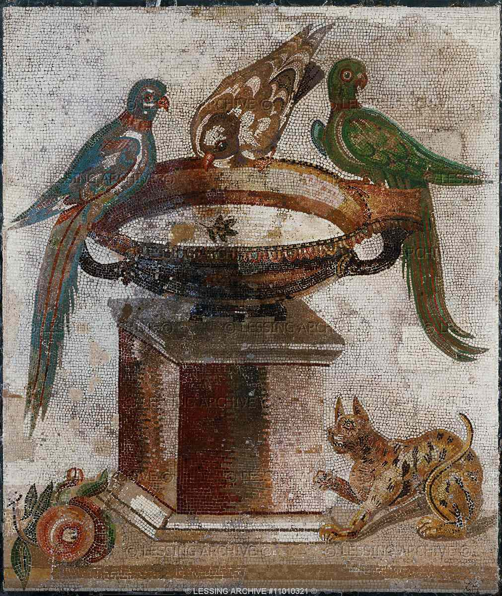 The Cat In Minoan Etruscan Greek And Roman Art The