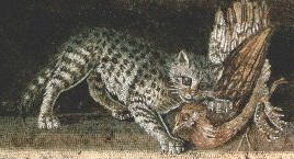 Cat Attacking Duck, Mosaic 1st Century AD Pompeii
