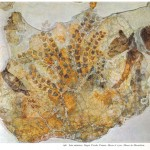 Minoan fresco with Cat Hagia Triada Crete 1500 BC Museum of Heraklion