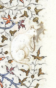 White Cat Holds a Grey Mouse 1420-1425 MSM.1004 fol.85r Source: P. Morgan Library, New York, cats in books of hours, medieval cats