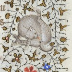 Cat Licks Itself 1420-1425 Hours of Charlotte of Savoy MSM 1004 fol.172r Source: P. Morgan Library, New York