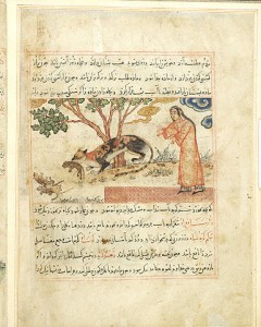 1297-1298 The Benefits of Animals Persian Female Cat Carries one Kitten to Three Dead Ones MSM.500 fol.49v Source: Morgan Library, New York