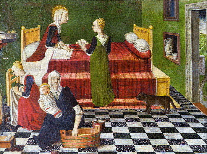 Birth of the Virgin Anonymous 1480 Venetian School, history of the cat