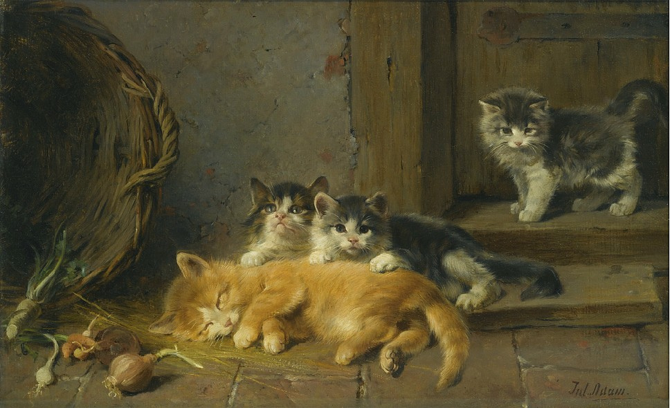 Kittens Julius Adam II Private Collection