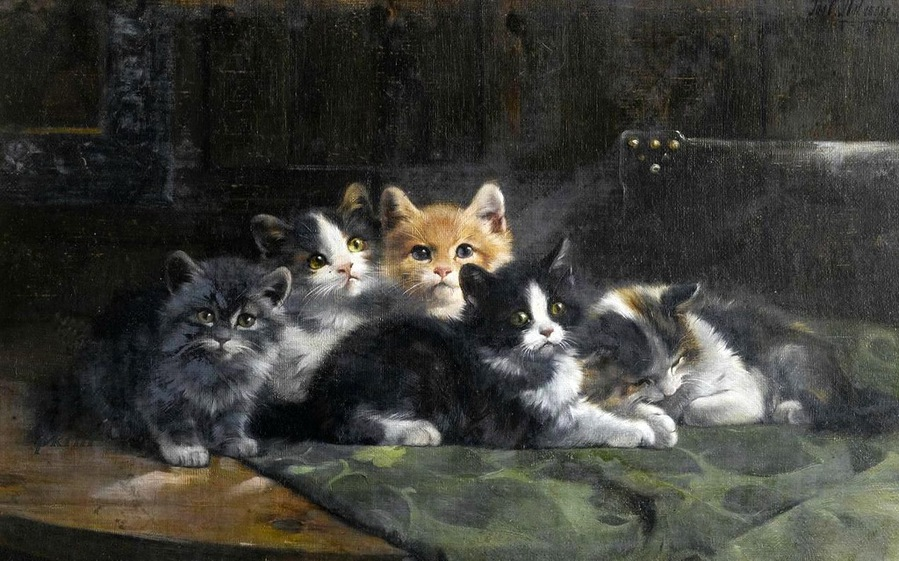 Five Kittens Julius Adam II Private collection