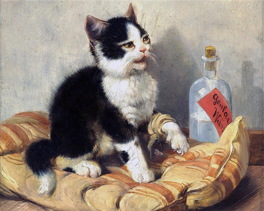 Kitten with Hurt Leg Julius Adam Private Collection