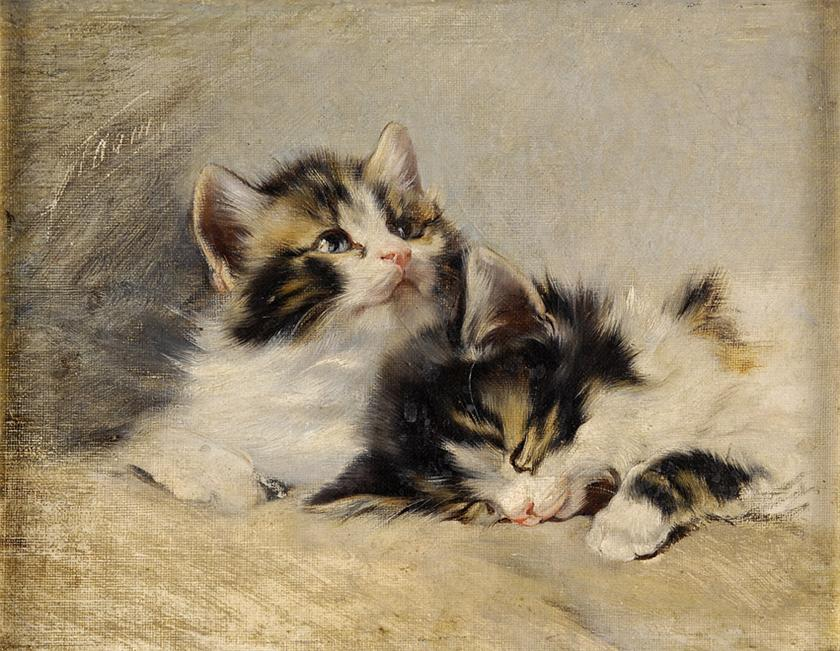 Two kittens julius adam