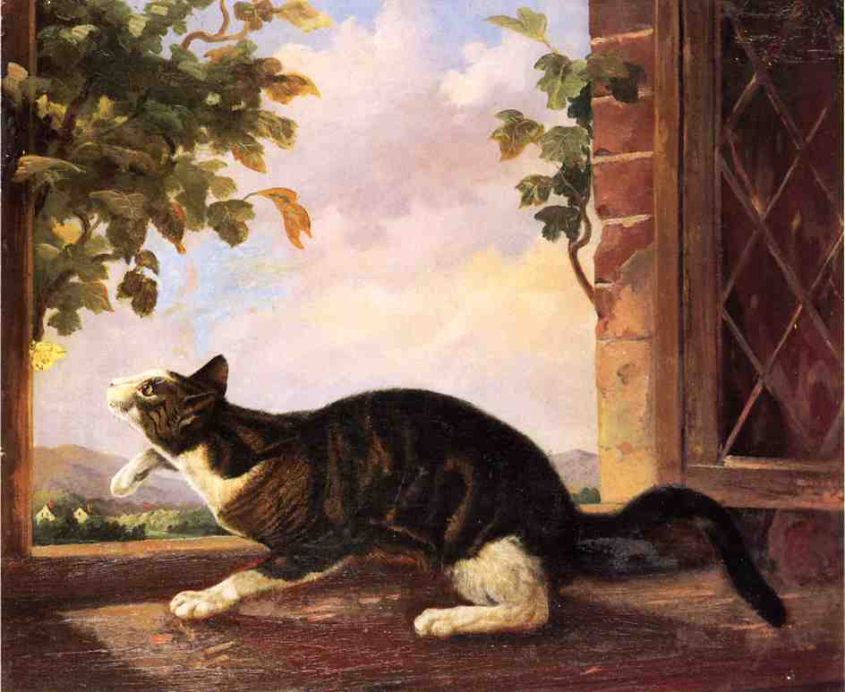Cat Stalking a Butterfly John Woodhouse Audubon