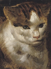Study of a Cat Jacob Jordaens (Antwerp 1593-1678) oil on paper, laid down on card 6¼ x 4 5/8 in. (15.8 x 11.5 cm.) Private Collection cats in art, best cat art, cats in art