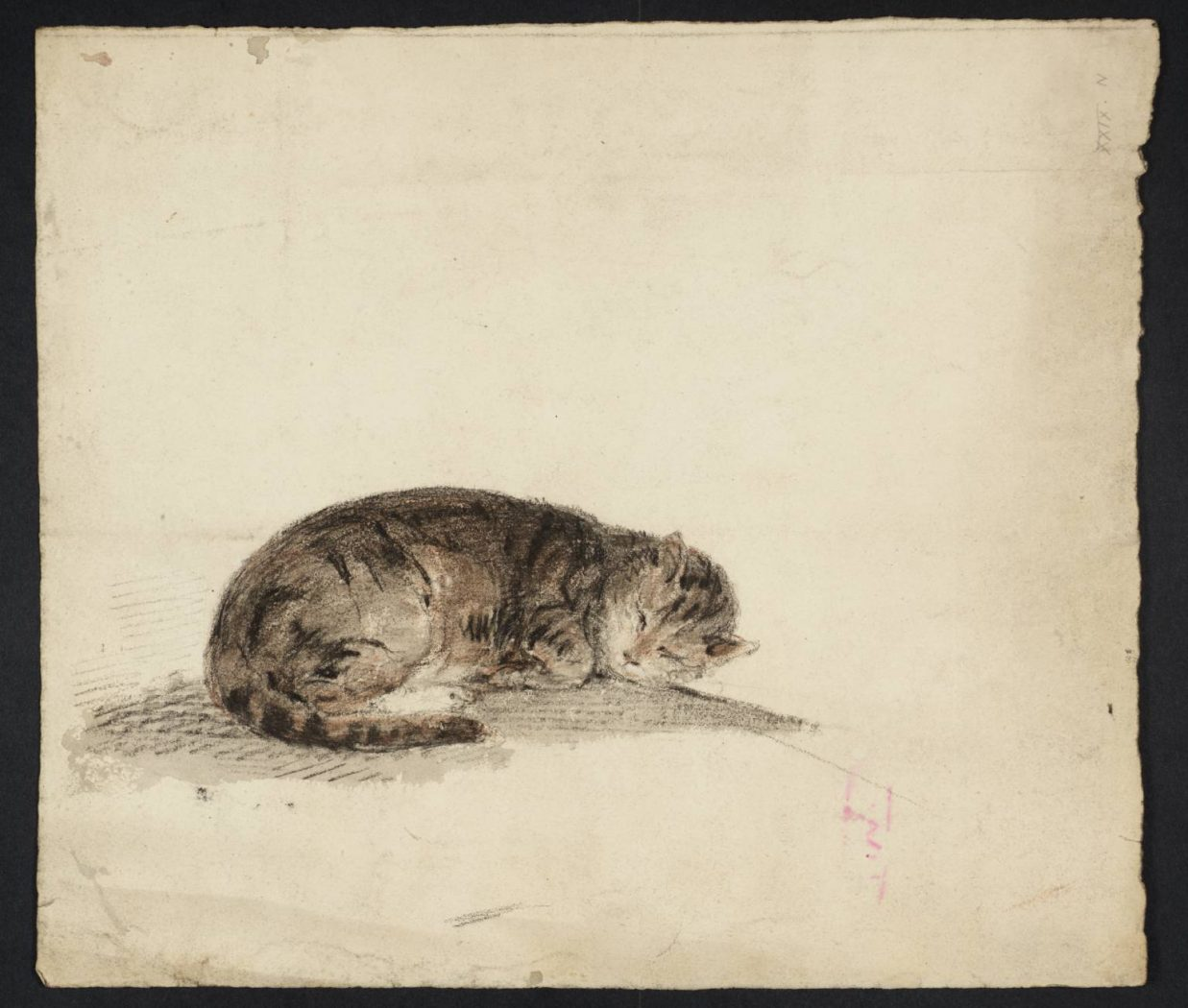 A Sleeping Cat 1796 Gwen John Tate Museum