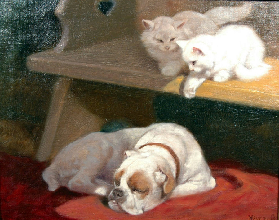 Two Kittens and a Dog Private Collection