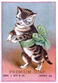 cats in advertisements, cats in 19th century history