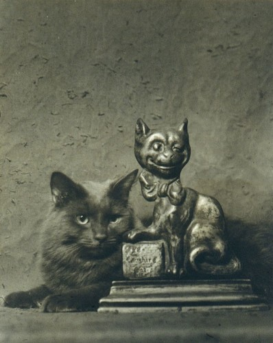 Buzzer the Cat with a Statue of a Cat