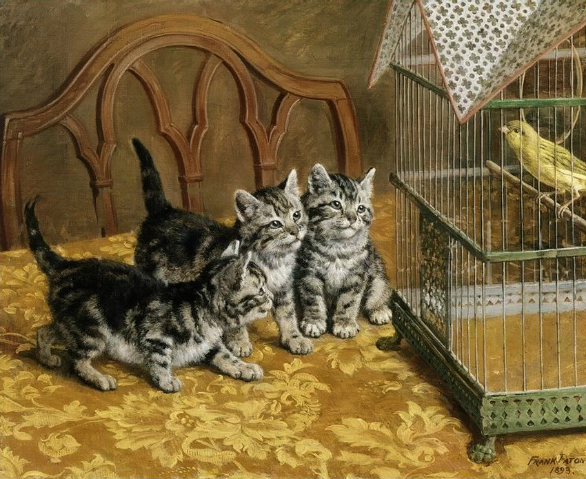Kittens and a Canary 1893 Private Collection cats in art