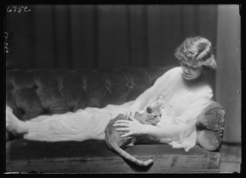 Miss Ann Murdock with Buzzer the Cat 1910