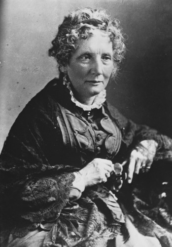 Harriet Beecher Stowe's cat Calvin