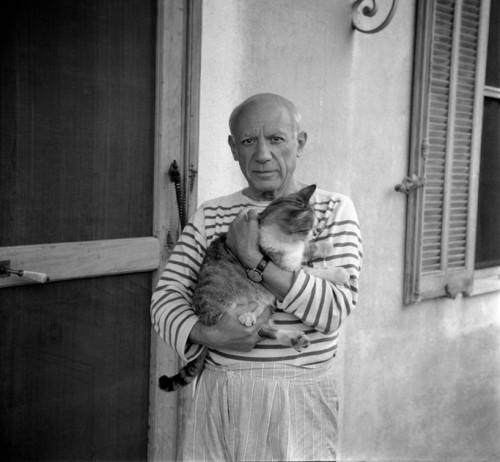 Picasso Cats