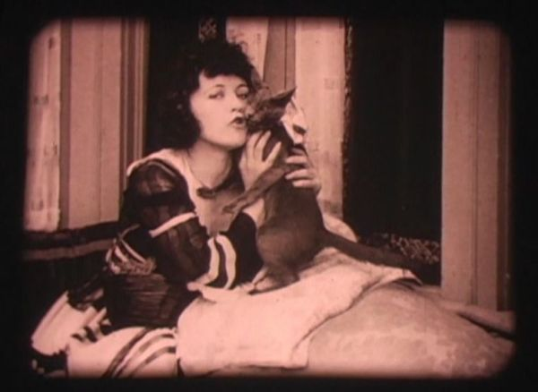 Marie Prevost and Pepper cats in film