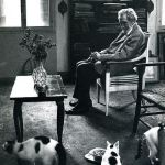 Cats in the 20th Century (Cats in Literature-T.S. Eliot's Cats)
