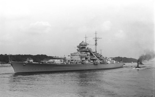 The German Battleship Bismarck, cats in war, Unsinkable Sam, cats in WWII