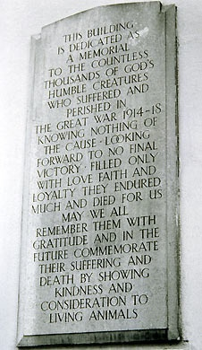 Plaque in memory of animals sacrificed during the First World War. Situated at the Memorial Dispensary in Kilburn, north west London, cats at war, cats in WWI