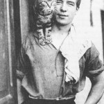 Cats in 20th Century History (Mrs. Chippy)