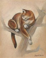 Cat in a Tree, Lehmann (Nam)