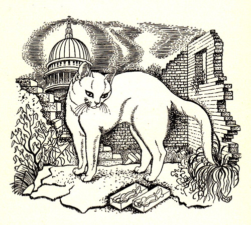 Illustration by Eileen Mayo from 'Kitty Kitty Kitty' by John Pudney