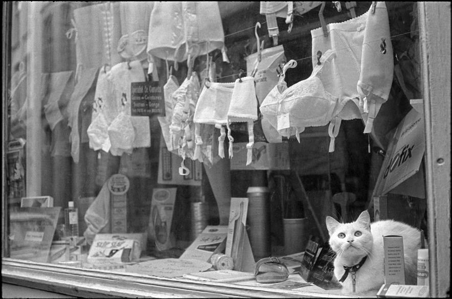 Connu Henri Cartier-Bresson (1908-2004, French) | THE GREAT CAT WJ27