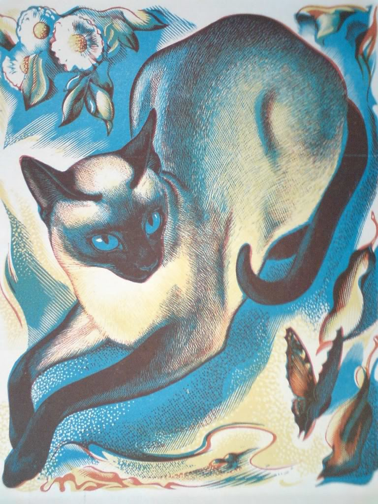 Siamese Cat 1950, Agnes Parker, cats in art