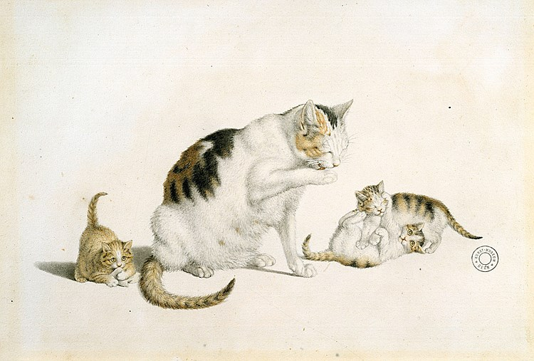 Gottfried Mind Mother and Kittens 4