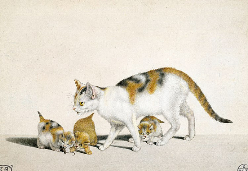 Mind Mother and kittens