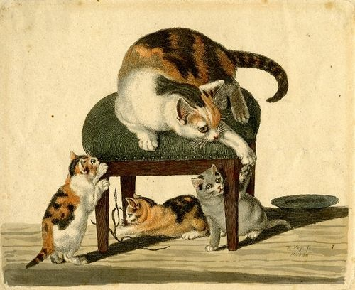 Mind, Cat family playing around a stool