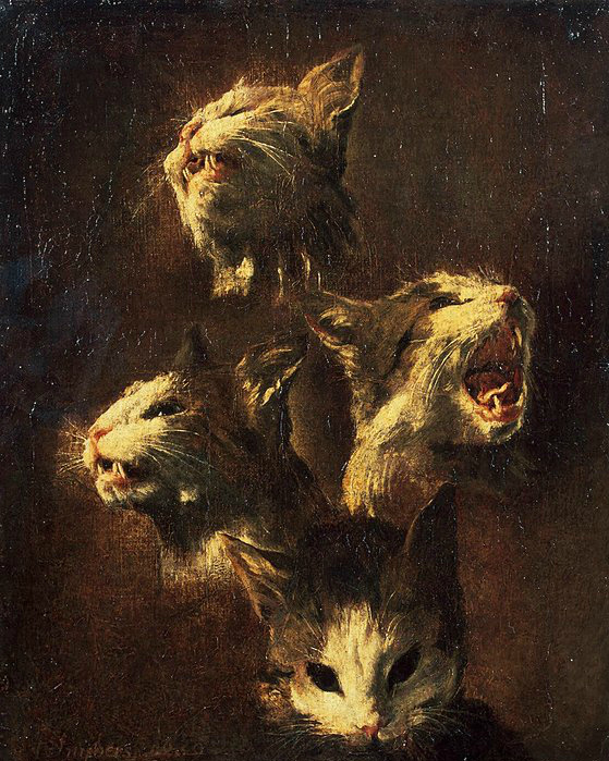 F Snyders Study of a Cat's Head