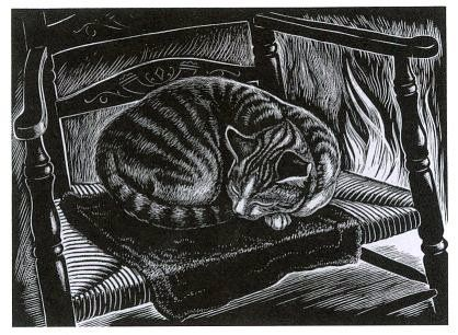 J. Nash Cat Asleep, cat engravings, cat art