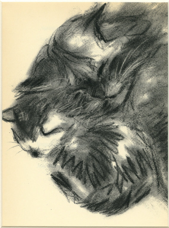 Clare Turlay Newberry Mother and Kitten