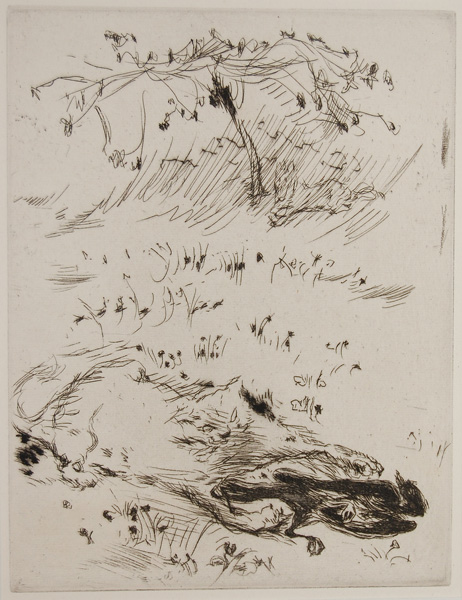 Sketch - Cat and Bird, Bonnard