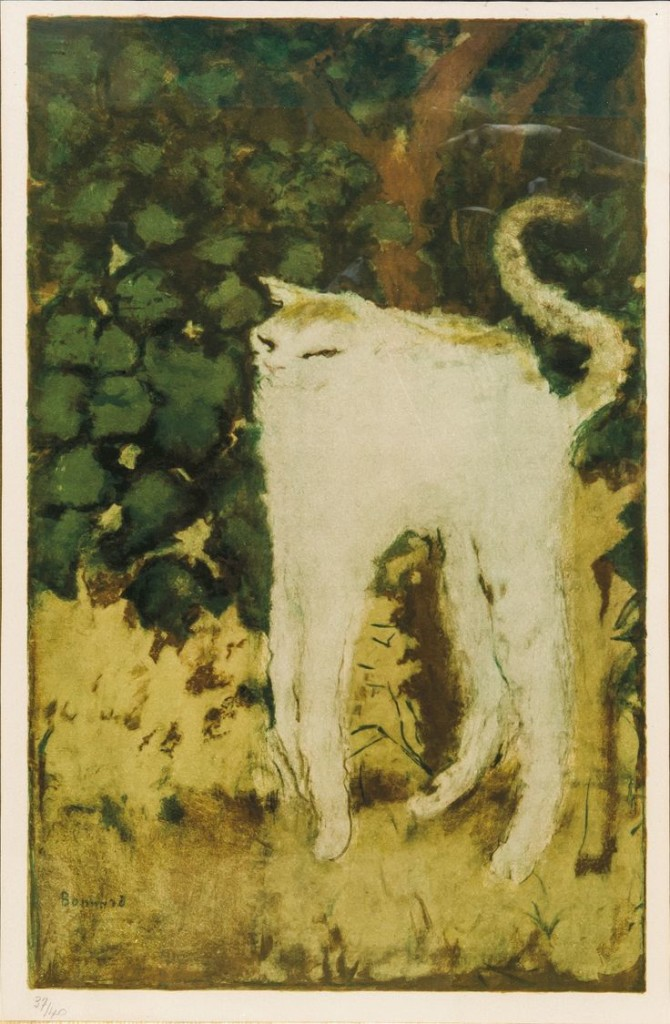 The White Cat, P. bonnard