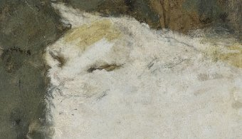 Detail, The White Cat, P. Bonnard