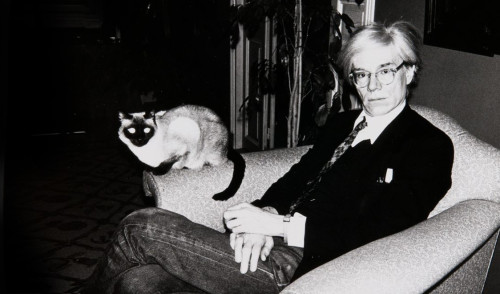 Andy Warhol and Siamese cat