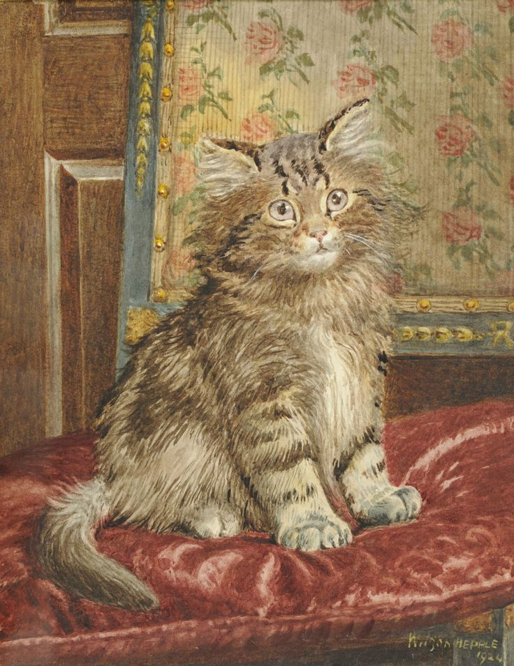 Cat on a chair Wilson Hepple (1854-1937)