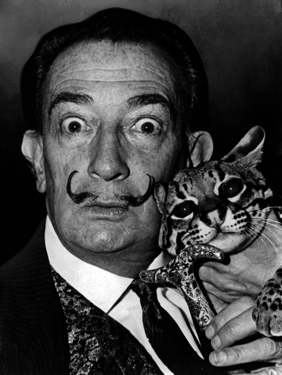 Babou and Dali 1965