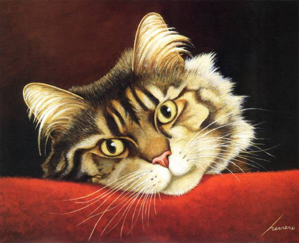 Mocha Dominguez Cat, Lowell Herrero