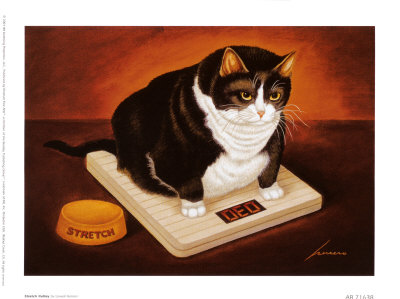 Stretch Kelly, Lowell Herrero