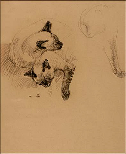 Study of Siamese Cats Sleeping, Theophile Steinlen