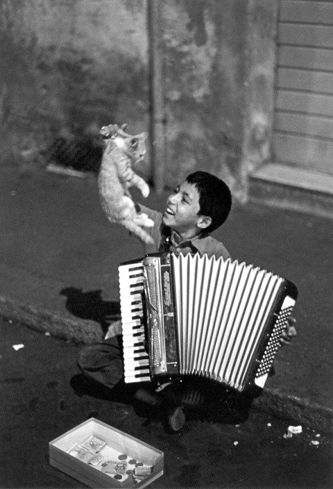 Boy and Kitten, Ferdinando Scianna 1983a