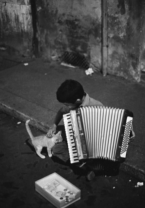 Boy and Kitten, Rome, Ferdinando Scianna