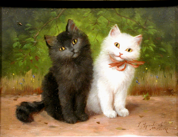 Sophie Sperlich, Black and White Kittens