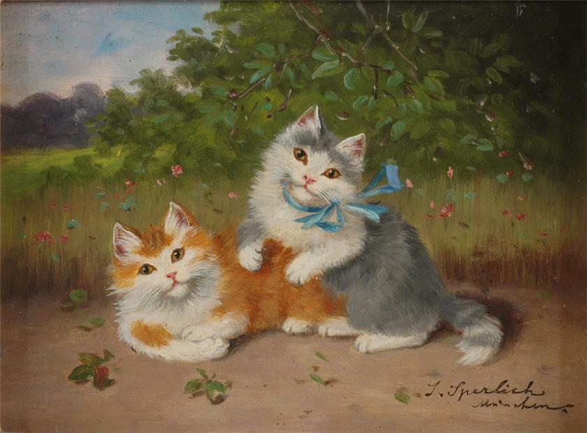 Sophie Sperlich, Orange and Grey Cats
